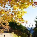 登山サークル!御岳山へ紅葉狩りに行ってきました。